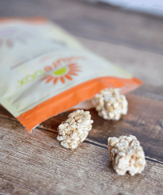Naturebox cashew power clusters